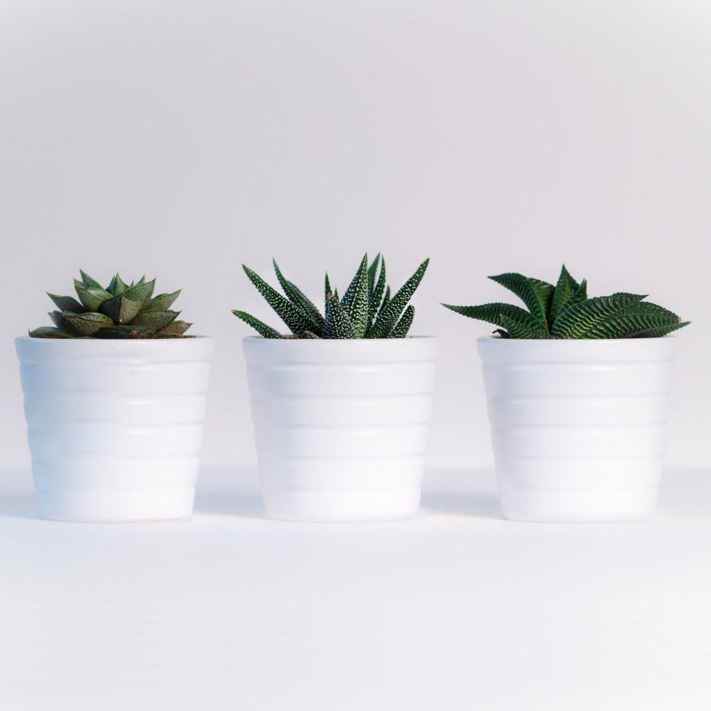 GRP Planter Pots